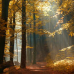 The Path of the Righteous Shines Ever Brighter, Prov. 4, Blog Through the Bible Project