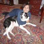 1001 Gifts: My Border Collie, Jake, and All the Dogs I have Loved