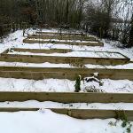 Anita's Vegetable Garden in the Snow=Frozen Vegetables