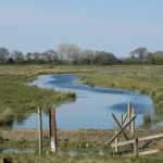 Otmoor Nature Reserve, Oxford (RSPB): Oxfordshire Walks