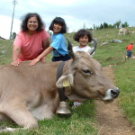 Our Summer Holiday in Switzerland, 2003 and 2013
