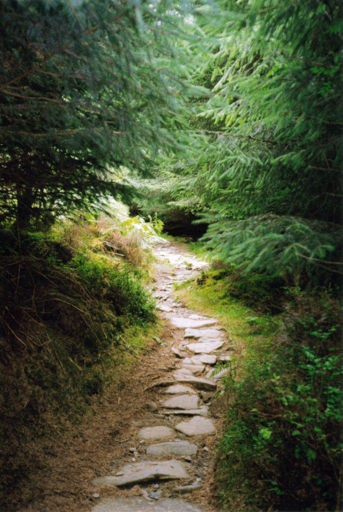 Mountain_Path_Stock_by_MirandaRose_Stock