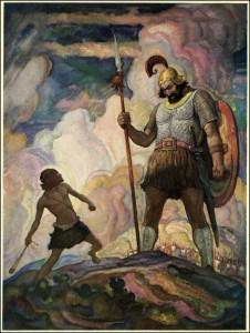 David, NC wyeth